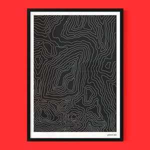 lámina 50x70 cm impresa en papel látex 200 gramos, enmarcada en madera color negro y vidrio; $43.000 + envío.